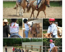 Le p'tit ranch - Poney club